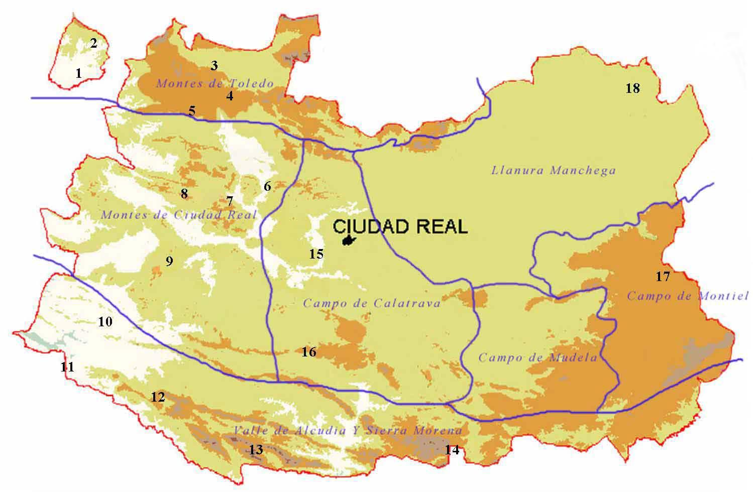 Mapa Provincia Ciudad Real.Areas Importantes Para La Herpetofauna En La Provincia De